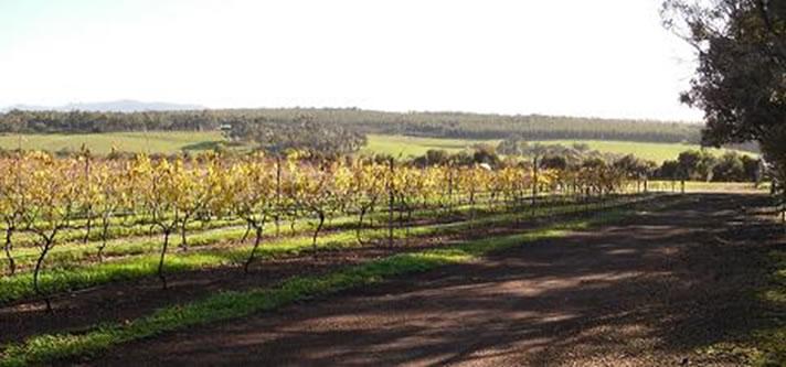 Kalgan river Wines, 2010